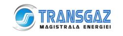 CMF, Crans Montana Forum, Transgaz