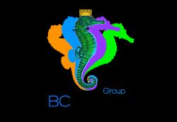 CMF, Crans Montana Forum, Dakhla, BCSkills